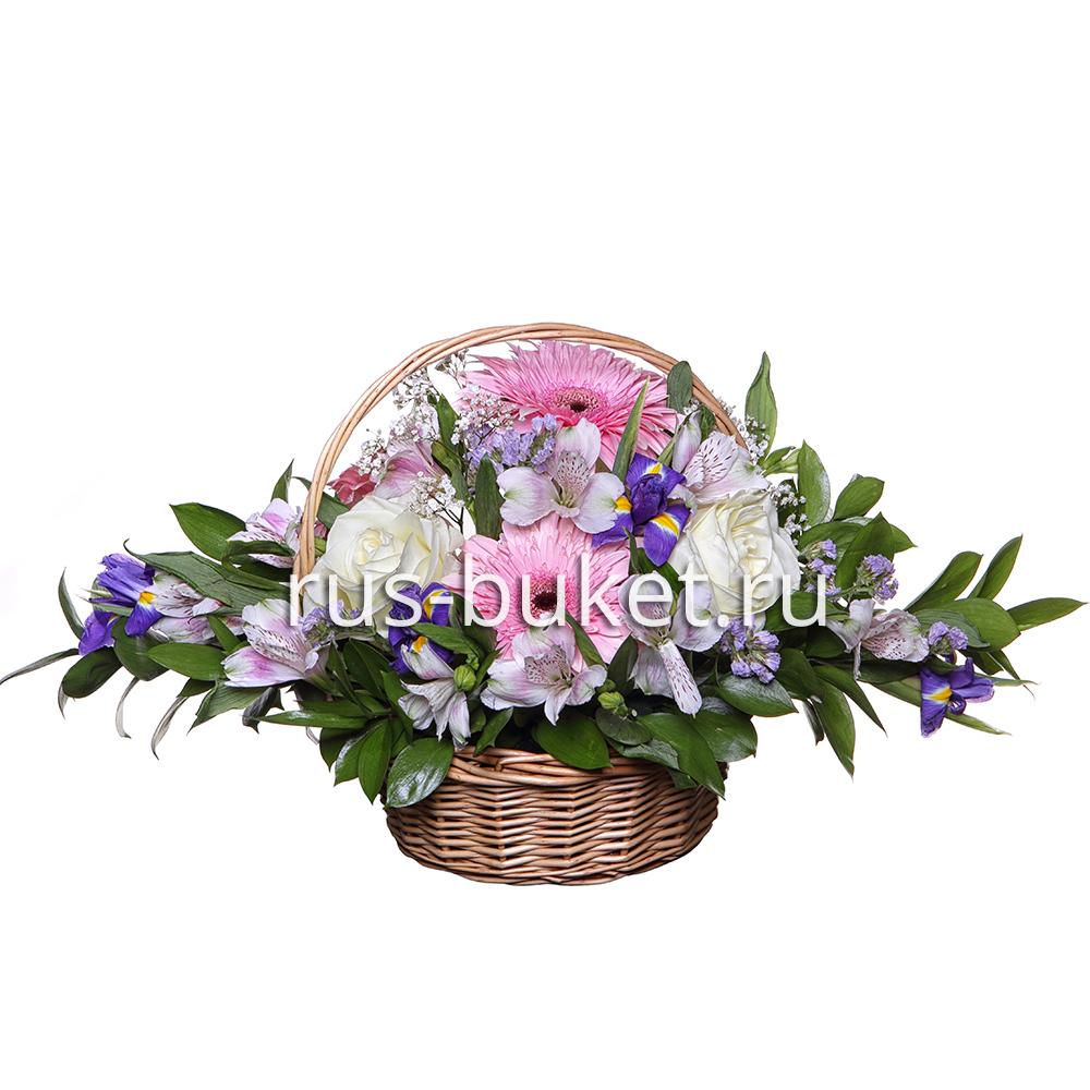 Букет ирисами цветы купить с доставкой в сочи цветов белорусской
